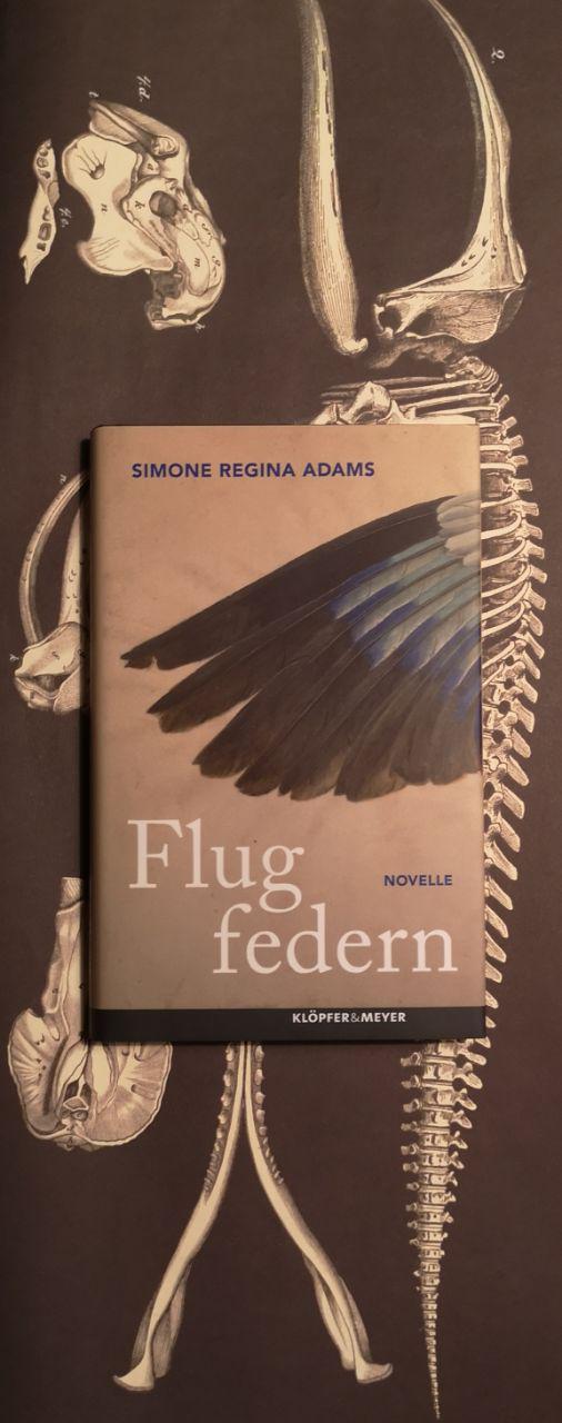 Flugfedern von Simone Regina Adams