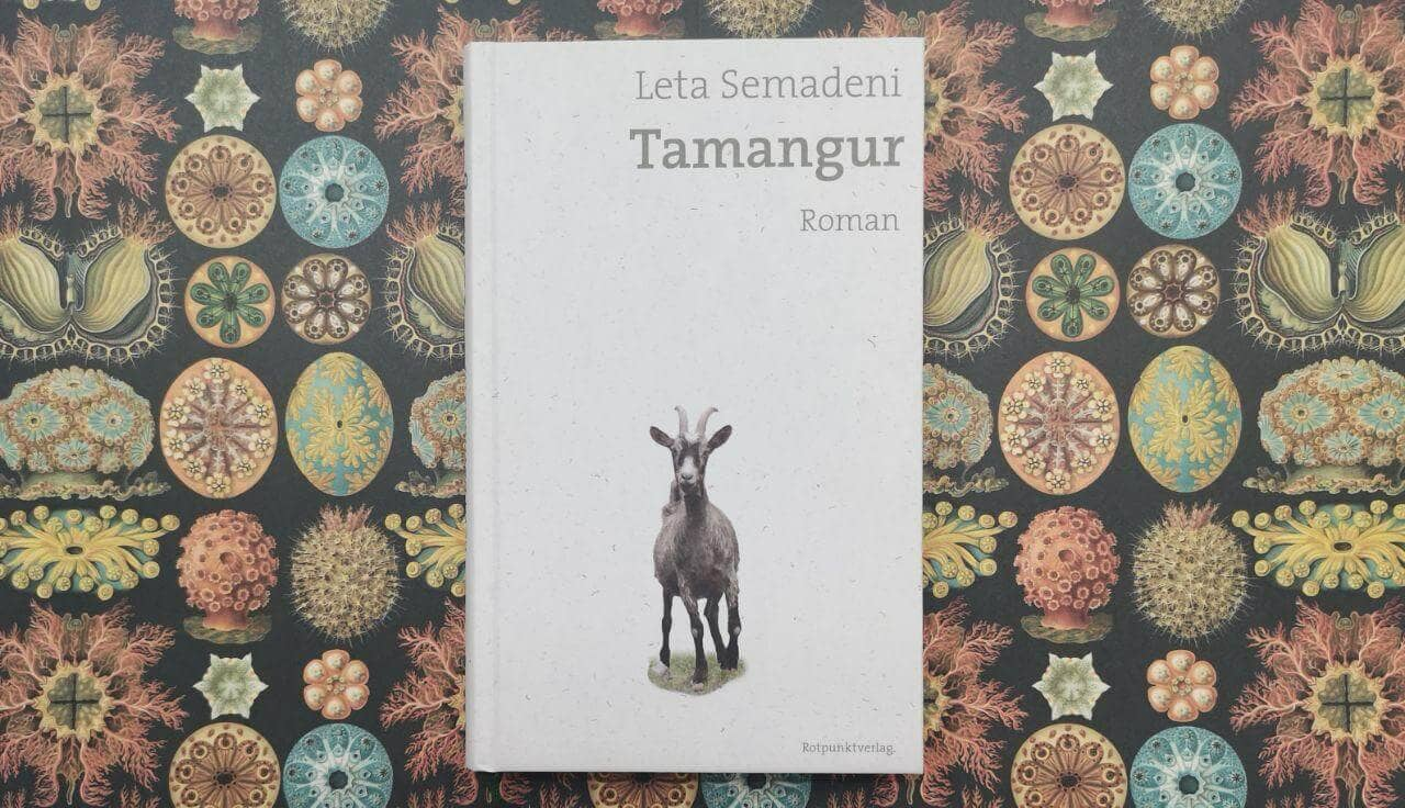 Tamangur von Leta Semadeni